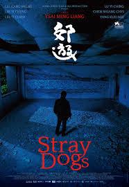 Película: Stray dogs