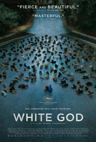 Película: White God (Dios blanco)